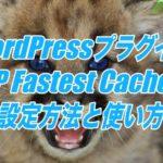 WP Fastest Cacheの設定方法と使い方-WordPressの高速化ができるプラグイン